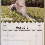 She's a calendar girl!