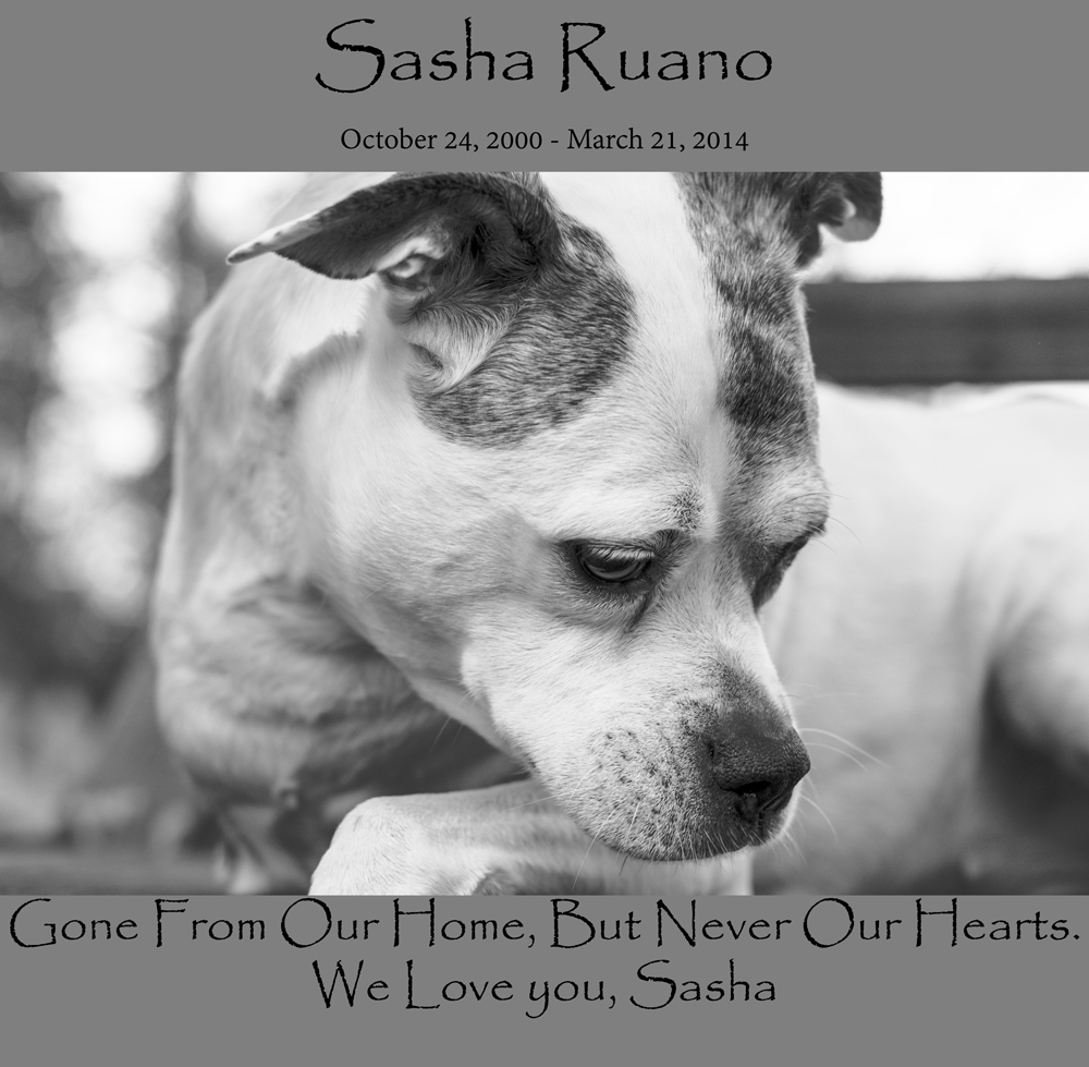 Sasha-Ruano-In-Our-Hearts